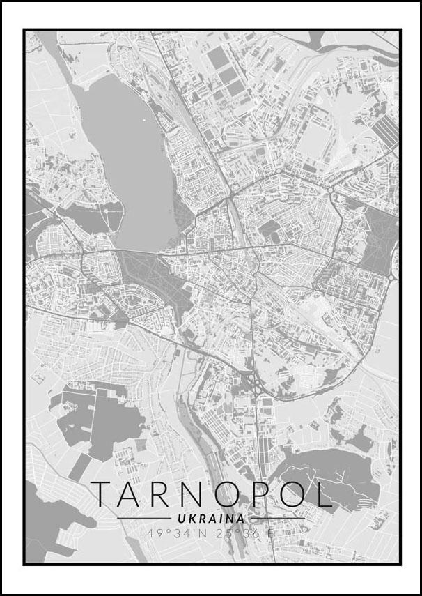 Image of Tarnopol mapa czarno biała - plakat wymiar do wyboru: 30x40 cm